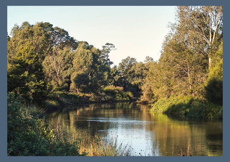 Reservoir Melbourne luscious parks